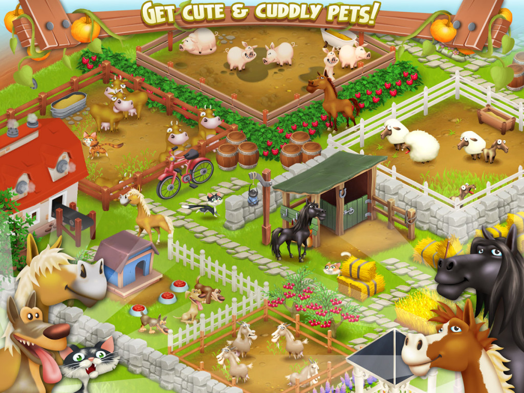 Hay Day 02